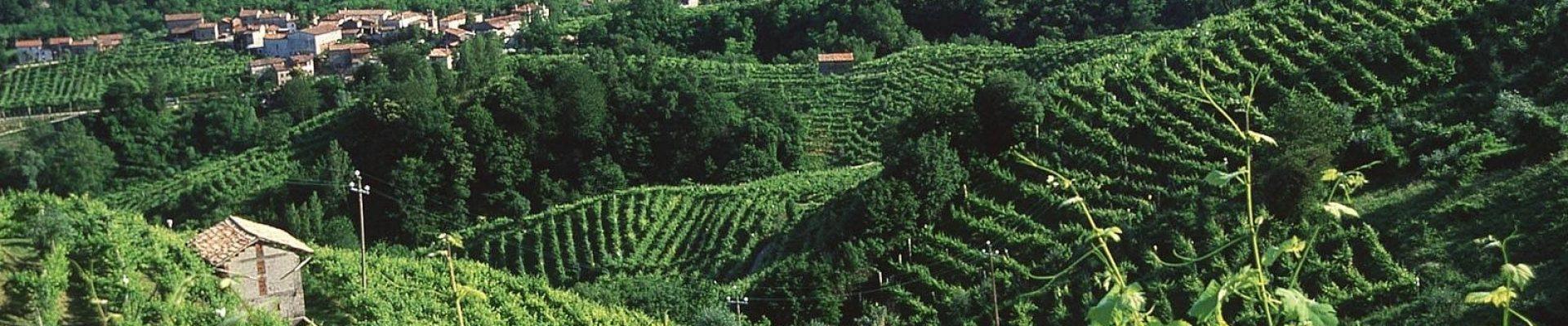 Prosecco_Valley